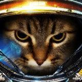 oJ.r3verFailO avatar