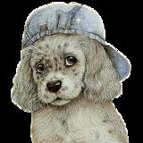 fousac avatar