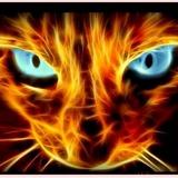 Bloodfun2585 avatar