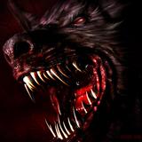 jachrazarwolf24xl avatar