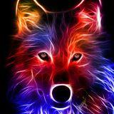 Willekingen12 avatar