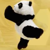 MEFFG avatar