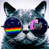 kepam_ma avatar
