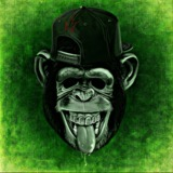 DaMaster15 avatar