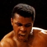 boxing avatar