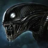 ilia_4444ise avatar