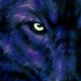 fraibert300 avatar