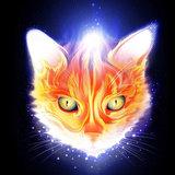 sun_5009 avatar