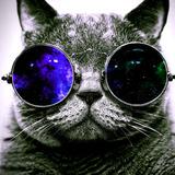 CoolCat avatar
