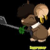 roger15com avatar