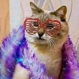 ARIEL_CL avatar