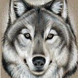 Wolfmick avatar