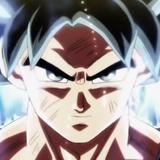 xxBlackGenc51 avatar