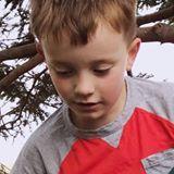 Lloyd avatar