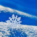 WintersHope avatar