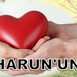 harunabdi82 avatar