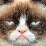 liood avatar