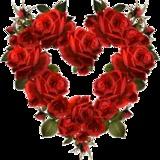 sarahfaraj0109 avatar