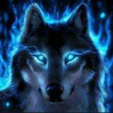 iceberck801 avatar