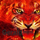 Gerald avatar