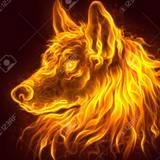 FIREWOLF avatar