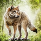 timberwolf avatar