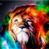 apdelrhman avatar