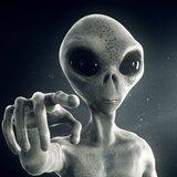 medelap1 avatar