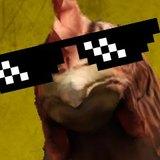 SOKKER avatar