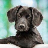 anitaholder1 avatar