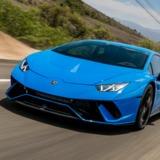 tiger7512 avatar