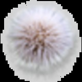 FYTTYR avatar