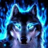 juan299 avatar
