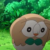 biglol69 avatar