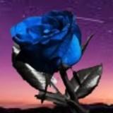 GingaNinja avatar