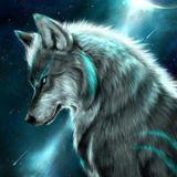 bleiz9008 avatar