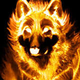 rare_fox234 avatar