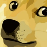 DOGEEE avatar