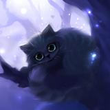 KittenCatsLife avatar