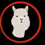 Llamaboyec avatar