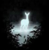 Luna2421 avatar