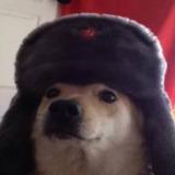 AlexZ3r0 avatar