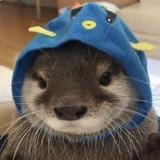 susanamtzz05 avatar