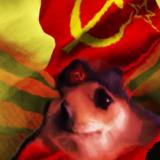 Muffel avatar