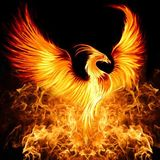 hibro1109 avatar