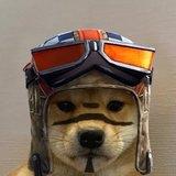 bamsefar309 avatar